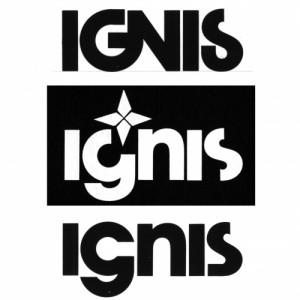 Studi per logotipo Ignis